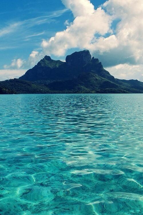 Isolati di Iris Bonetti ~ l'isola